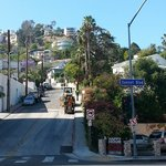 View into the Hollywood Hills as you walk out the front of the hotel. Surprised that it wasn't v