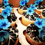 Crazy cute cupcakes