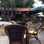 Cozy place in the old town, in the courtyard. Lots of greenery waterfall murmurs parrot on