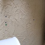 I filled holes in wall