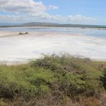 Cabo Rojo Salt Flats - Observation Tower View
