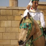 Mohammed V Shrine Guard