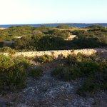 start of coastal walk