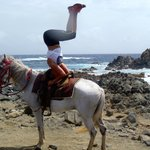 horseback headstand