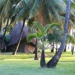 le jardin et bungalow