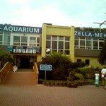 Theme Park Marine Aquarium (Erlebnispark Meeresaquarium)