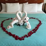 Honeymoon towel art