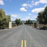 Opus Oneの正面ゲート