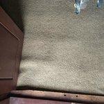 gross dirty brown indoor/outdoor carpeting in bedroom