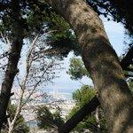 Vista del mediterráneo desde lo alto del Montjui