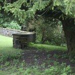 Thirlestane garden