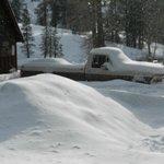 Great Winter Scenes!