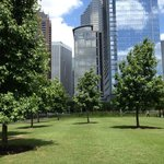 Discovery Green with downtown skyline