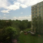 View from room 312 - nice outdoor/garden dining