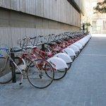 Велосипеды рядом с отелем.