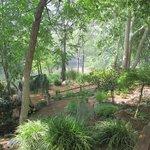 Nearby Oak Creek park