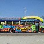 this bus screams FUN