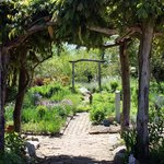 Part of the rambling, rustic gardens.
