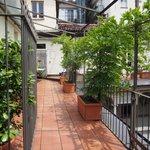 Common terrace/balcony