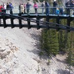 People on Skywalk Jasper National Park