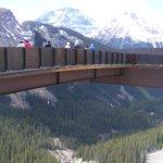 Skywalk Jasper National Park