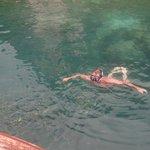 Swim with the FISH !!!!