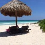 Day on the beach under palapas