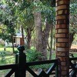 Foto de Samudra Guest House