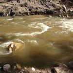 Beautiful Fall River at Stonebrook! :)
