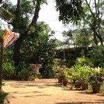 lovely front garden