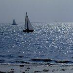 vele al largo