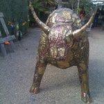 amazing bull