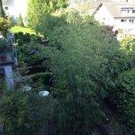 Сад у отеля