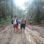 Caminhando na Floresta