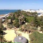 Panoramica desde habitacion impar 7a planta