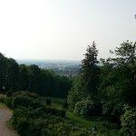 вид на утреннюю Вену
