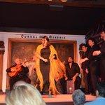 The flamenco show