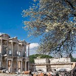 Celsus from a new angle