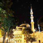 Blue Mosque with night gulls