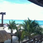 view from mimi del mar