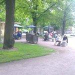 Bear Park cafe 1 June 2014