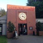 Hippopotamus Lomme