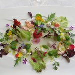 a salad too beautiful