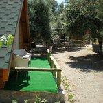 Kütük ev - Bahçe