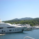 boat trips available daily