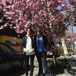 Soho Prince Street in Spring