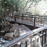 Camino hacia las aguas termales