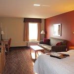 Room 243 includes a sleeper sofa.