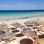 Oasis marine plage