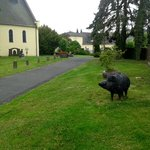 The wild boar sculpture in the grounds